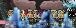 Maple0794.jpg
