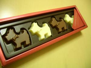 チョコだす