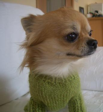 ばぁばの 手編み