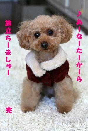 IMG_361511a.jpg