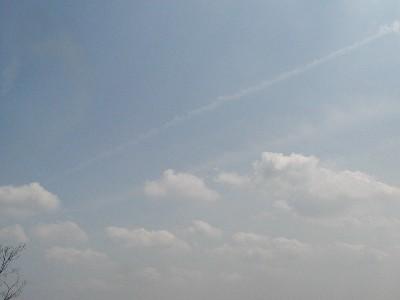 20070408-1.jpg