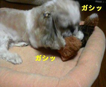 2008091201160001.jpg