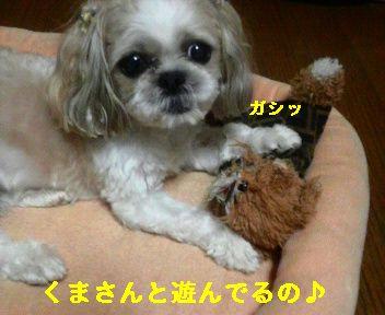 2008091201170001.jpg