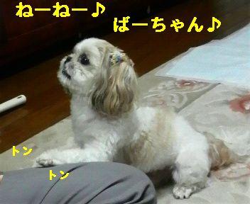 2008091819090000.jpg
