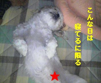 2008092012310000.jpg