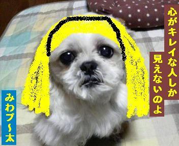 みわプ~太