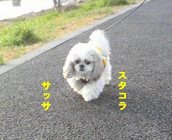 2009012316040000.jpg