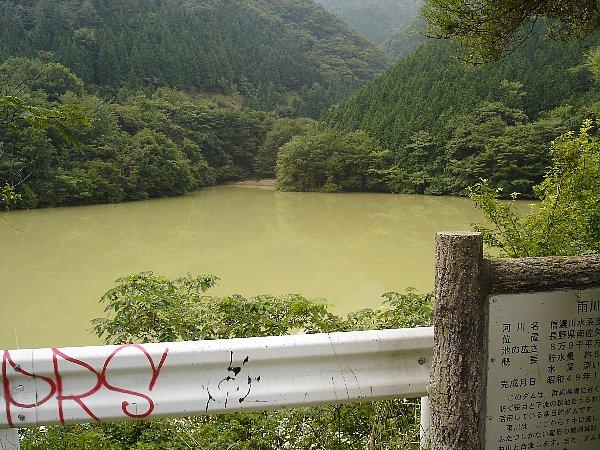 Topダークグリーンのダム.JPG