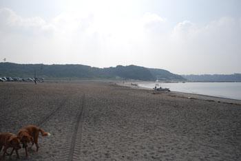 夏の終わりの海
