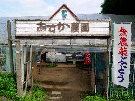 asuka_nouen.jpg