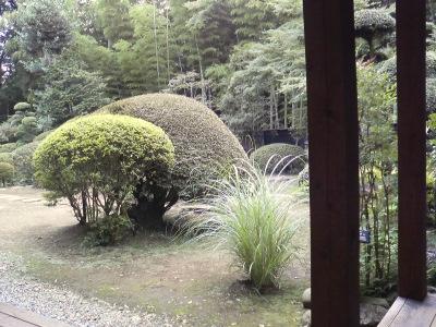 sakanoke_niwa.jpg