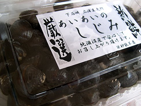 shijimi_hinuma.jpg