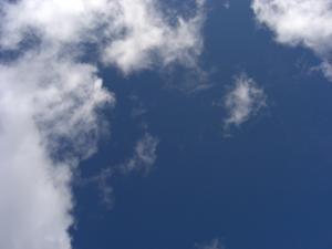 CIMG1502-2_20081003134710.jpg