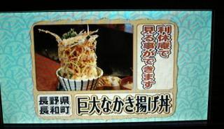 長野県長和の利休庵の「巨大かきあげ2」