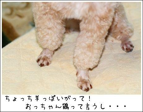 20080613_1427.jpg