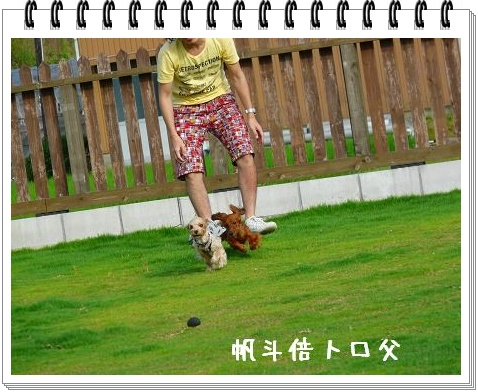 P1020155.jpg
