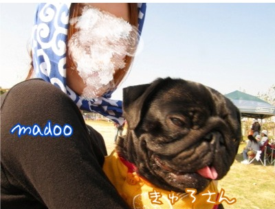 madooきゅろさんだっこ6