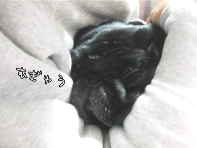 08.12.11.4むぎゅう