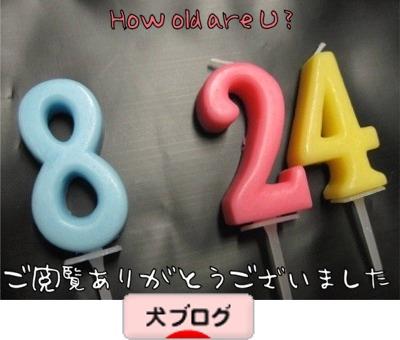 09.1.20.ばな2