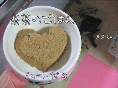 09.2.8.6茶々ご飯
