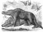 オールドメガロサウルス