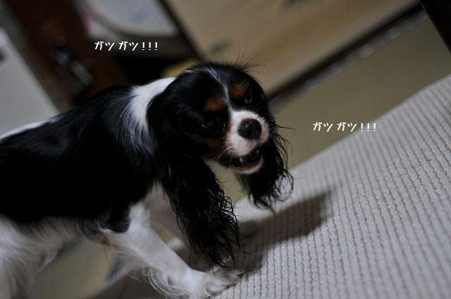 2008.07.24 152