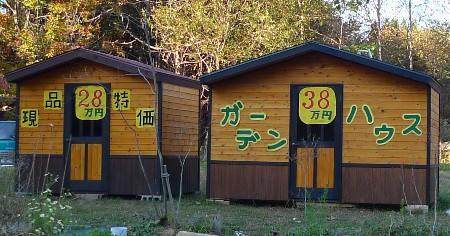 donguri21.jpg
