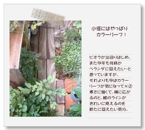 DSC59081.jpg