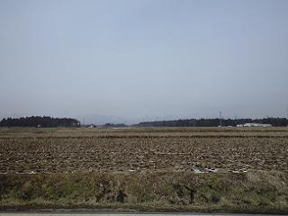20090314.jpg
