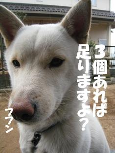 okashii.jpg