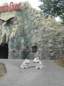 洞窟の前で