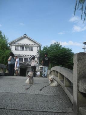倉の前の石橋