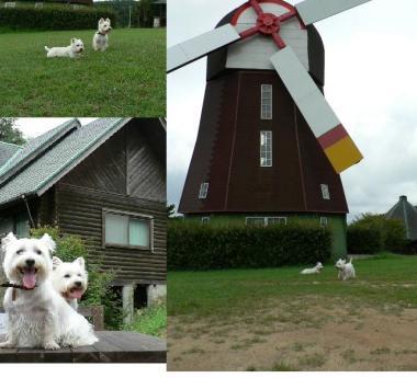 大きな風車の前で♪