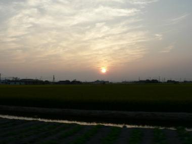 綺麗な夕日♪