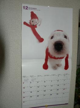 今年のウエスカレンダー