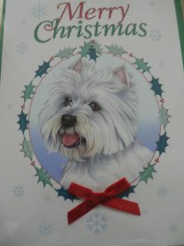 ★ メリークリスマス♪ ★