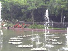 噴水 庭園