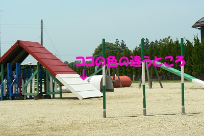 P1190485s.jpg