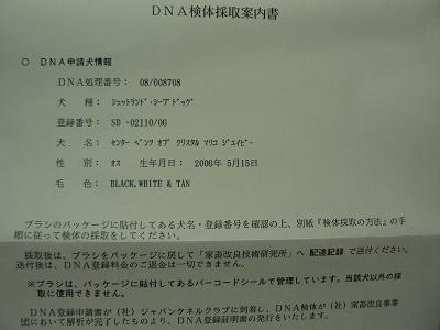 P1230274s.jpg