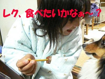 P1300180sa.jpg