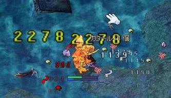 20081114.jpg