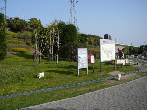 20090419 031