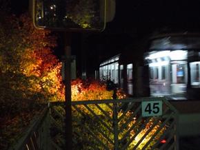 rie451.jpg