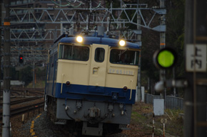 rie804.jpg