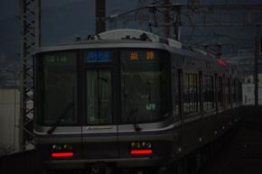 rie843.jpg