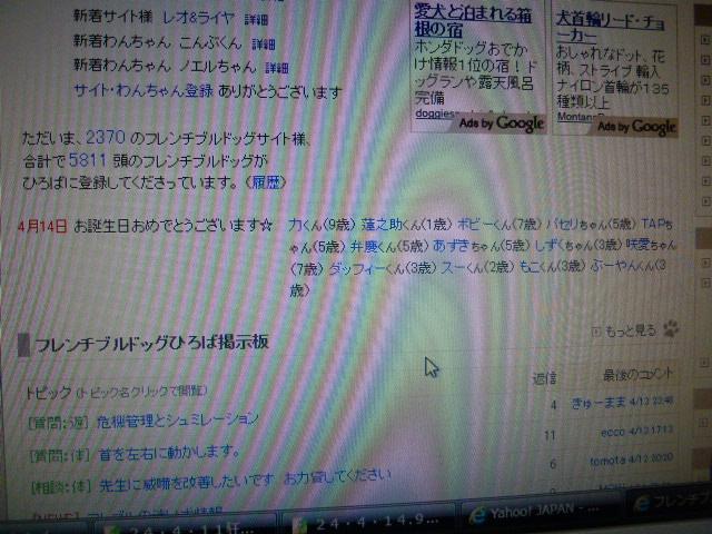P1030961.jpg