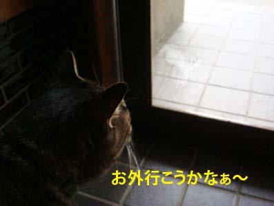 riki09-24-01.jpg