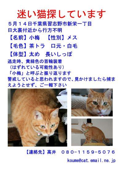 小梅ブログ用ポスター
