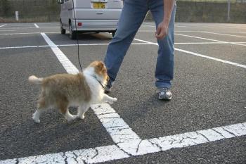 外での、初歩き(^^)