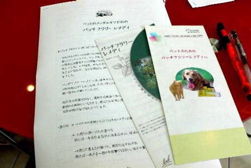 20060630121006.jpg